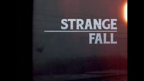Animals Skateboarding - Strange Fall - The Animals Skateboard Company