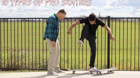 10 Types of Pro Skateboarders - LamontHoltTV