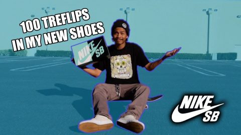 100 TREFLIPS IN MY NEW SHOES NIKE SB BRUIN LOW | Vinh Banh
