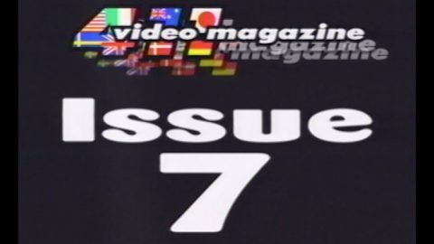 411VM Issue 7 | TransWorld SKATEboarding