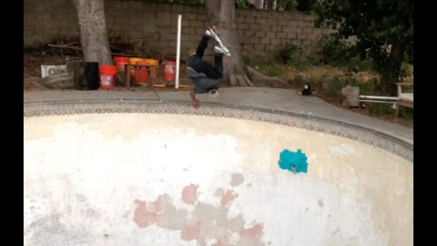 Adam Mercado - FRESH EGGS - Sined Skateboards | ConfusionMagazine