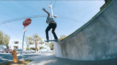 Alex Massotti | Bones Bearings