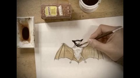 And Now... How To Paint a Bat with Marcel Dzama | Juxtapoz Magazine