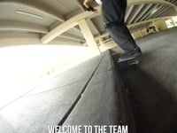Andale Bearings Commercial | True Skateboard Mag