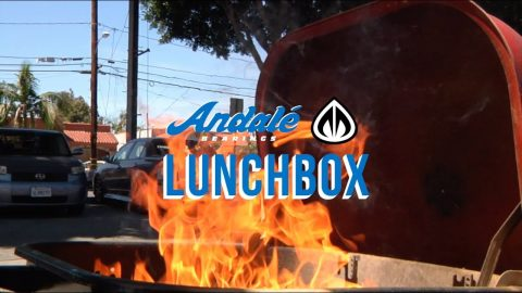 Andale Lunch Box: Mainline Skate Shop | Andale Bearings