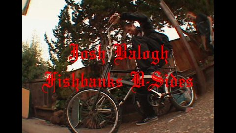Balogh Fishbanks B-Sides | David Duesterberg
