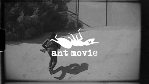 BlackLabel | Ant Movie | Peter Watkins | Black Label Skateboards