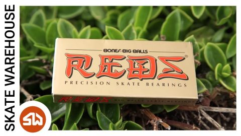 Bones Big Balls Reds Bearings Review | Skate Warehouse