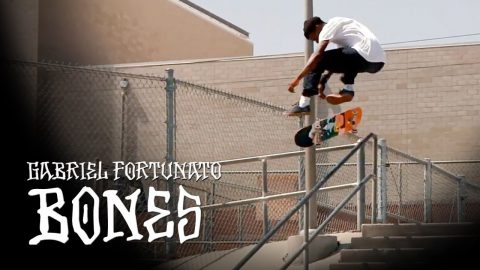 BONES WHEELS - GABRIEL FORTUNATO | BONES WHEELS