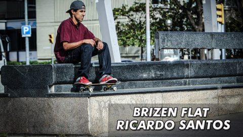 Brizen Flat with Ricardo Santos - Brizen Videos