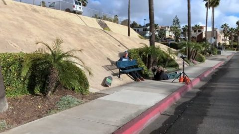Cali Carl Corner: Mycah Williams | True Skateboard Mag