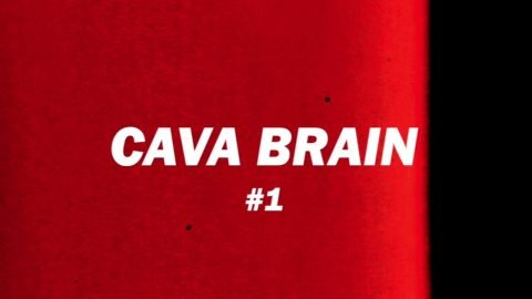 Cava Brain #1 - TransWorld SKATEboarding