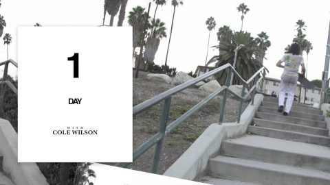 Cole Wilson - One Day - The Berrics