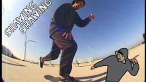 Den Haag - Shawing Shawing | Turtle Productions