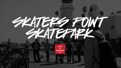 DGK - Skaters Point - Saved by Skateboarding - DGK