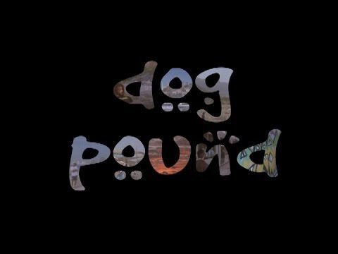DOG POUND - DCCTV