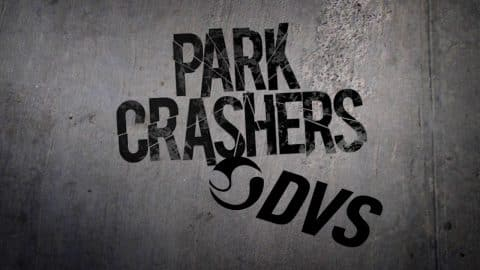 DVS Park Crashers - Active Ride Shop