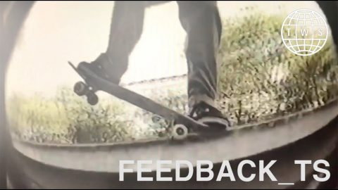 Feedback_TS | Donny Barley Phase, Lines Ted Almost Likes, Varial Kickflips | TransWorld SKATEboarding