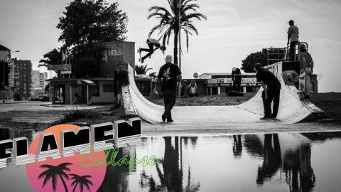 #FlamencOLLAPSe ! | cOLLAPSe skateboards