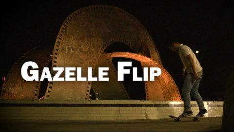 Gazelle Flip: Shaun Rodriguez || ShortSided - Brett Novak
