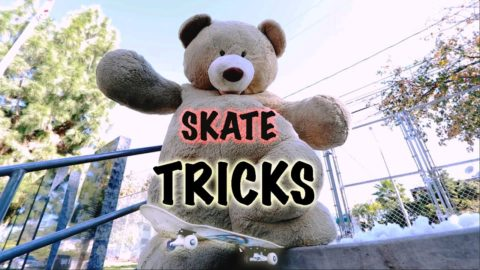 GIANT TEDDY BEAR SKATEBOARDING - Chris Chann