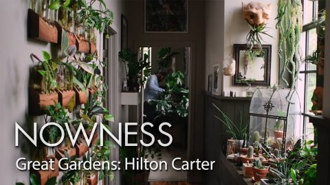 Great Gardens: step into Hilton Carter's houseplant paradise | NOWNESS