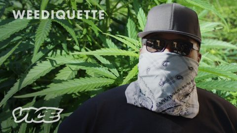 How I Smuggle Weed From California to New York | WEEDETTIQUE - VICE TV