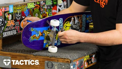 How to Build a Skateboard - Tactics | Tactics Boardshop