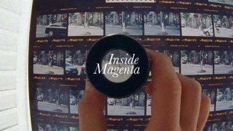Inside Magenta - Vivien Feil - What Youth