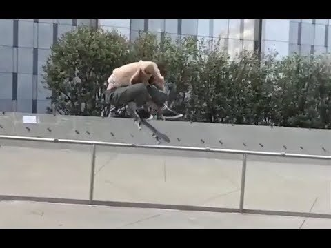 INSTABLAST! - Skater & Car Hitting Same GAP!! Full Pipe Loop!! No Comply Bs 5-0 Handrail!! - Metro Skateboarding