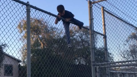 Lil Ocean and his dad! Hoping fences! - Vimeo / FaveLA skateboarding media's videos