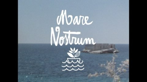 MARE NOSTRUM - Magenta Skateboards