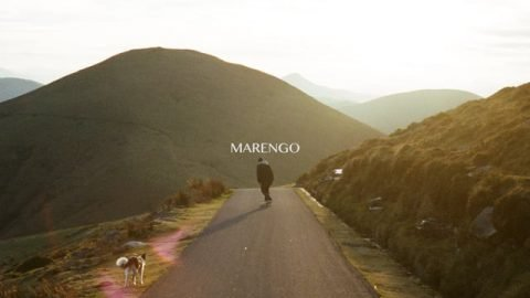 Marengo - WASTED TALENT