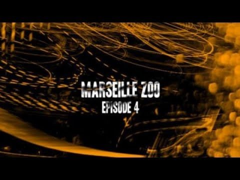 Marseille Zoo Final Section - TransWorld SKATEboarding