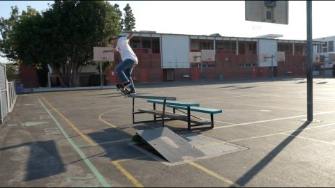 Martin Pek | Bones Bearings