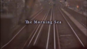 Music Box: The Morning Sea | True Skateboard Mag