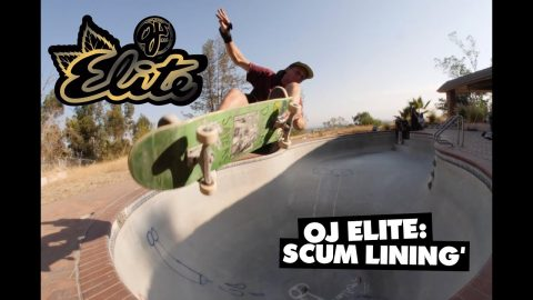 OJ Wheels Elite | Scum Lining' | OJ Wheels