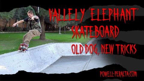 "'Old Dog, New Tricks' - Vallely ""Elephant"" Skateboard 
