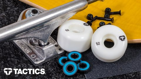 Parts of a Skateboard | Skateboard Buying Guide - Tactics | Tactics Boardshop