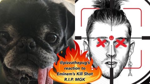 Pizza Reacts To Eminem's Kill Shot RIP MGK | Joey Brezinski