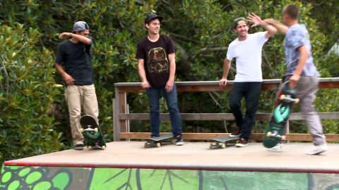 Powell-Peralta | Mini Ramp | The Orchid - Powell Peralta