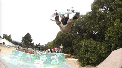 Powell-Peralta 'Raw Clips' - The Orchid Mini Ramp | Powell Peralta
