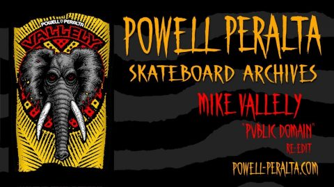 Powell Peralta Skateboard Archives - Mike Vallely - Powell Peralta