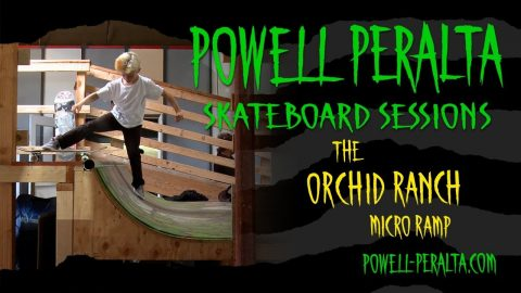 Powell Peralta Skateboard Sessions - Orchid Micro Ramp - Powell Peralta