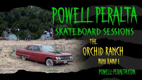 Powell Peralta Skateboard Sessions - Orchid Mini Ramp I - Powell Peralta