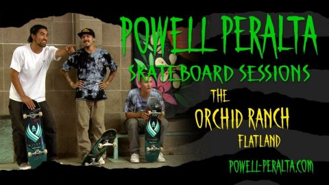 Powell Peralta Skateboard Sessions - Orchid Flat Land - Powell Peralta