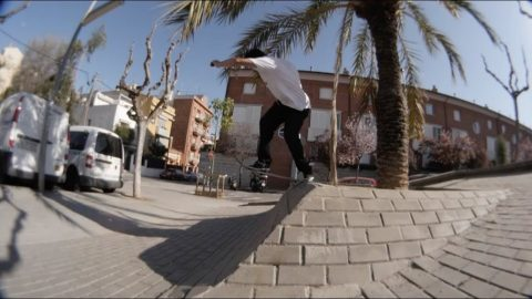 Robert Aleman - Bones Bearings