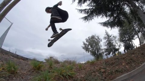 Rough Cut: Panda Patrol Episode 6. Enzo | ThrasherMagazine