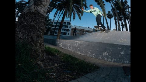 Santa Cruz Skateboards Europe - 'January' | Vague Skate Mag
