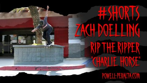 "#Shorts Zach Doelling in ""Charlie Horse"" 